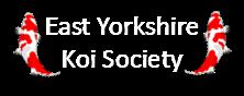 East Yorkshire Koi